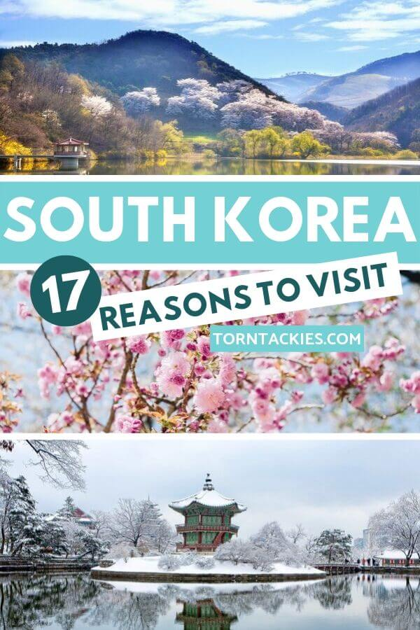 Why You Should Travel To South Korea