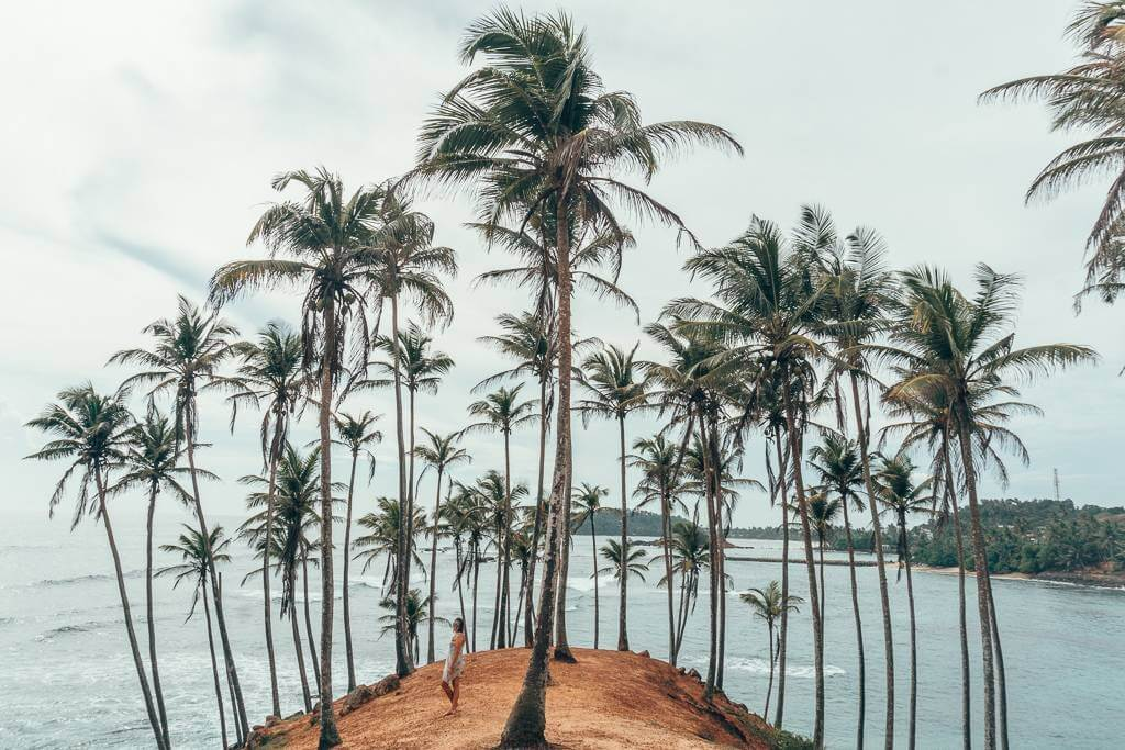 Coconut Hill is iconic to Mirissa